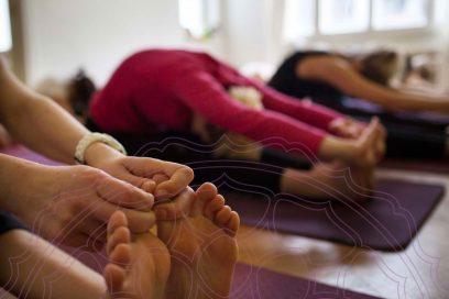 Anatomieworkshop für Yogalehrer und Interessierte